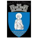 Primaria orasului Pantelimon